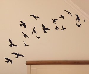 bedroom, birds, and decoration image