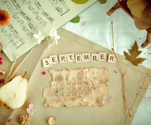September, autumn, and vintage image