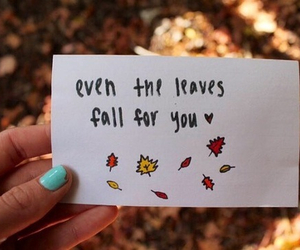 leaves, love, and autumn image