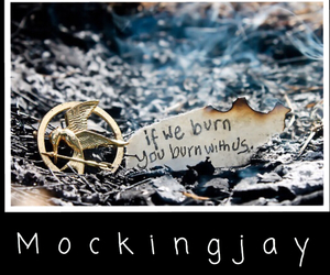 quotes, hunger games, and mockingjay image
