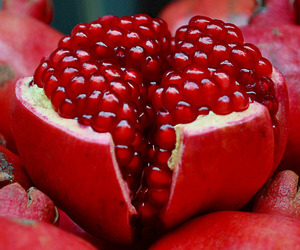 fruit, red, and pomegranate image