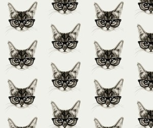 cat, cool, and hipster image