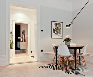 home decor, interior, and zebra image