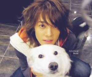 donghae image
