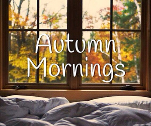 autumn, morning, and bed image