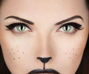 makeup, cat, and Halloween image