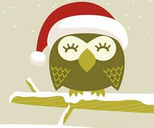 christmas, owl, and wallpaper image