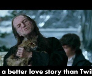 funny, harry potter, and lovestory image