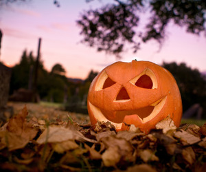 Halloween, head, and leaves image