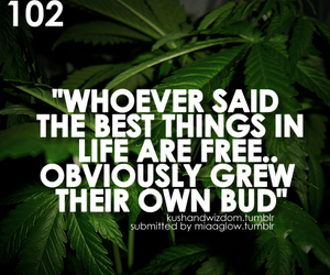 :), lol, and grow ur own image