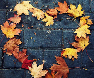 autumn, cool, and heart image