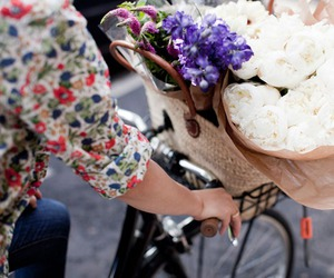 flowers, bike, and floral image