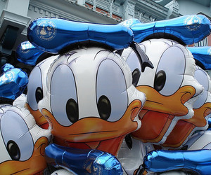 disney, donald duck, and photography image