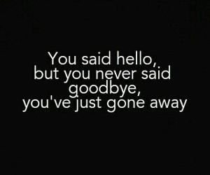 hello, gone, and goodbye image