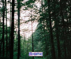 breathe, grunge, and indie image