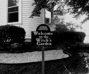 black and white, dark, and garden image