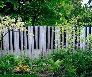 fence, piano, and garden image