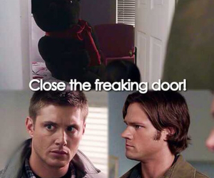 bear, Sam, and winchester image