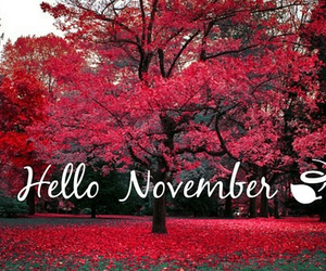 hello, november, and red image