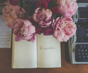 flowers, november, and book image