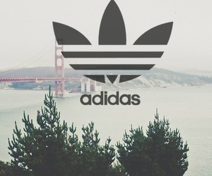 adidas, skate, and swag image