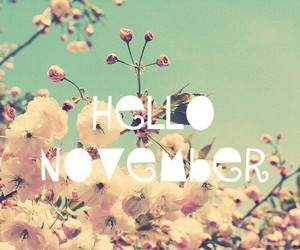 november, hello, and flowers image