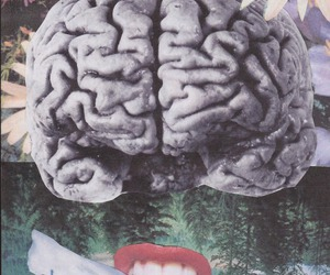 brain, think, and talk image