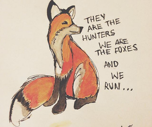 Taylor Swift, fox, and i know places image