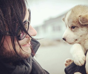 greenland, puppy, and the defiled image