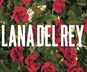 lana del rey, flowers, and rose image