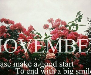november, smile, and flowers image