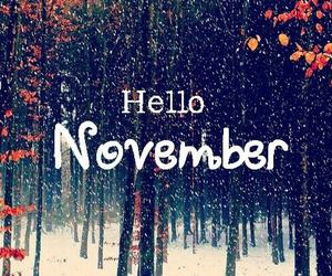 november, hello, and winter image