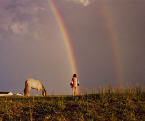 rainbow, horse, and photography image