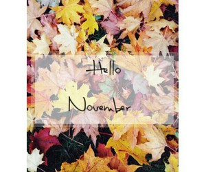 fall, Halloween, and leaf image