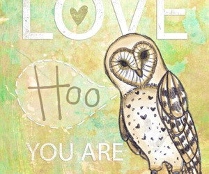 owl, love, and quote image