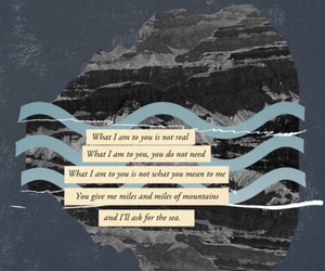 damien rice, need, and quote image