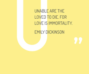 beautiful, death, and emily dickinson image