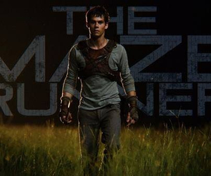 the maze runner, dylan o'brien, and thomas image
