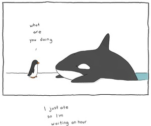 funny, penguin, and comic image
