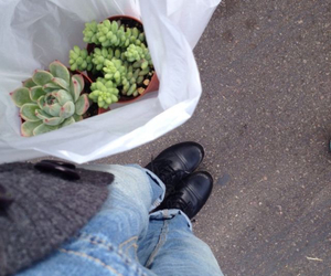 plants, grunge, and indie image