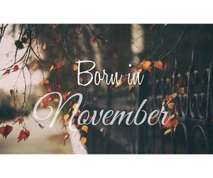 november, born, and fall image