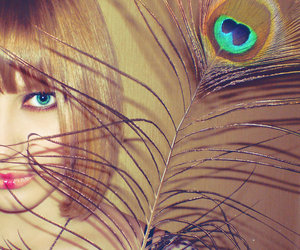 eyes, peacock, and photography image