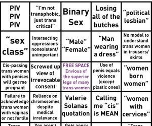gender, spectrum, and identity image