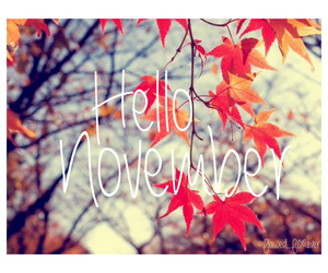 hello, november, and leaves image