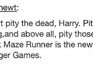 dumbledore, harry potter, and the hunger games image