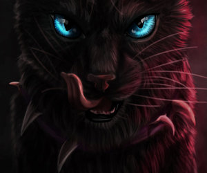 art, black, and cats-warriors image