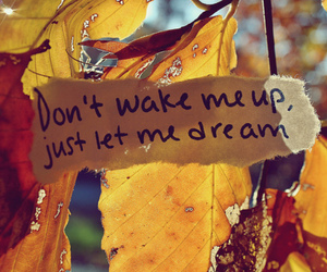 Dream, quote, and leaves image