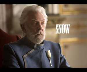 snow, hunger games, and mockingjay image