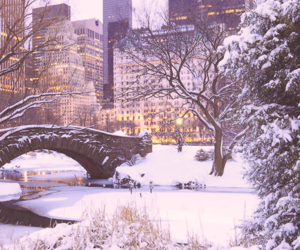 city, park, and snow image