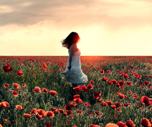 girl, photography, and poppy image